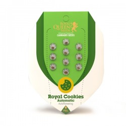 ROYAL COOKIES Autofloraisons
