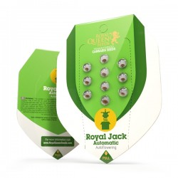 ROYAL JACK Autofloraisons