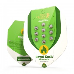ROYAL KUSH Autofloraisons
