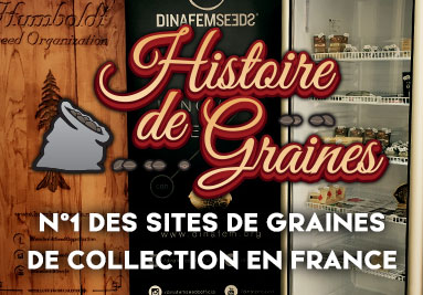 N 1 des sites de graines de collection en France